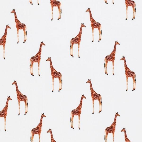 Aquarell - Giraffen - BW-Jersey